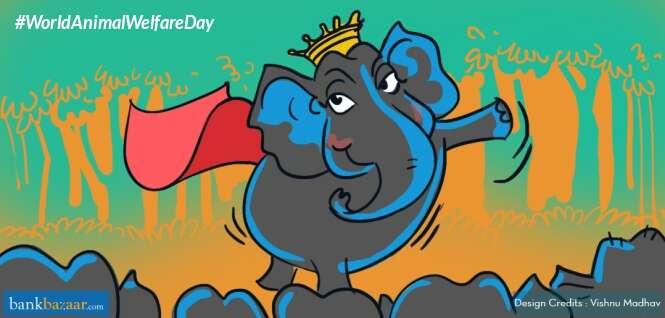 World_Animal_Welfare_Day